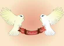 Deux pigeons blancs volent avec l'alimentation de salutation Image stock