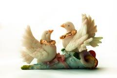 Deux pigeons pour des anneaux de mariage Photo stock