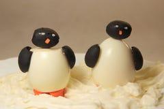 Deux pingouins Images libres de droits