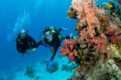 Deux plongeurs autonomes Photographie stock