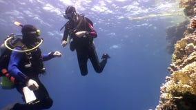 Deux plongeurs autonomes d'eau profonde nageant près des récifs coraliens sous l'eau en Mer Rouge banque de vidéos