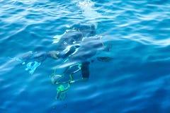 Deux plongeurs autonomes sous l'eau photo stock