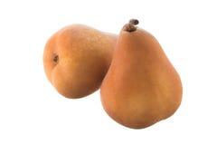 Deux poires de Beurre Bosc Photos stock