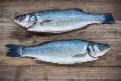 Deux poissons crus de bar sur le fond en bois Images libres de droits