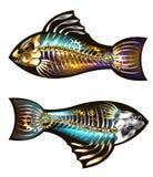 Deux poissons mécaniques illustration de vecteur