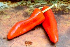 Deux poivrons rouges doux Photographie stock libre de droits