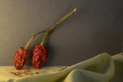 Deux poivrons secs chauds se penchant contre le mur Image stock