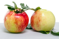 Deux pommes avec des feuilles Photos libres de droits