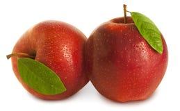 Deux pommes avec des lames Photographie stock libre de droits