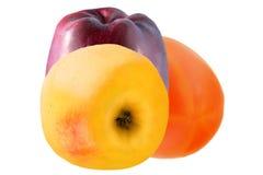 Deux pommes et kakis d'isolement sur le fond blanc Photos stock