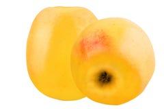 Deux pommes jaunes d'isolement sur le fond blanc Image stock