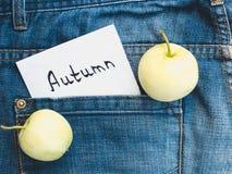 Deux pommes mûres et une note photos libres de droits