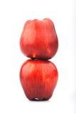 Deux pommes rouges images libres de droits