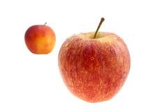 Deux pommes rouges avec des baisses les eaux. Photos libres de droits