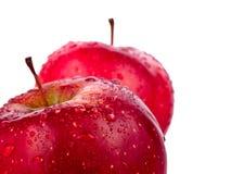 Deux pommes rouges humides d'isolement sur le fond blanc Photos stock
