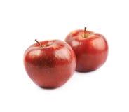 Deux pommes rouges mûres Images stock