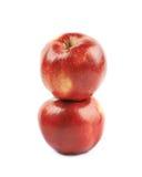 Deux pommes rouges mûres Photos stock