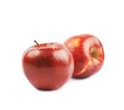 Deux pommes rouges mûres d'isolement Photographie stock