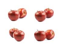 Deux pommes rouges mûres d'isolement Image stock