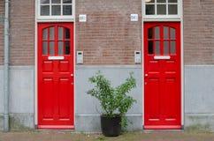 Deux portes rouges sur la fa?ade de la maison Grand pot de fleurs de rue avec la plante verte Voisinages lat?raux est d'Amsterdam photo stock