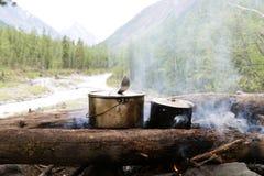 Deux pots se tiennent sur le feu dans la forêt image libre de droits