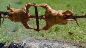 Deux poulets sur une broche en bois rôtissant au-dessus du feu de bois photo stock