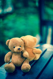 Deux poupées d'ours Image libre de droits