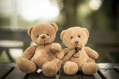 Deux poupées d'ours Photos libres de droits