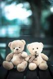 Deux poupées d'ours Photo libre de droits