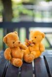 Deux poupées d'ours Image stock