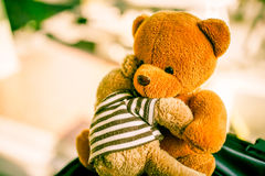 Deux poupées d'ours Photos stock