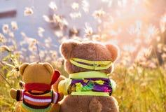 Deux poupées d'ours dans la position assise au jardin, regard comme ils observent le chien Photographie stock