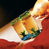 Deux projectiles de tequila Image stock