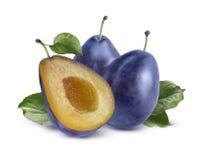 Deux prunes et fentes sur le fond blanc Photo stock
