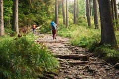 Deux randonneurs marchant le long d'une traînée de forêt Images stock