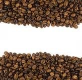 Deux rangées des grains de café Images libres de droits