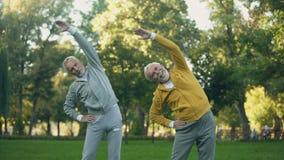 Deux retraités âgés faisant des exercices de matin en parc, activité de forme physique, bien-être clips vidéos