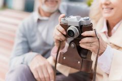 Deux retraités s'asseyent sur le banc et étudient un appareil-photo de vintage Ils vont prendre quelques photos Photos libres de droits