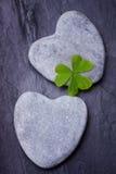 Deux roches en forme de coeur grises avec le trèfle poussé des feuilles sur une tuile Photo libre de droits