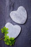 Deux roches en forme de coeur grises avec quelques oxalidex petite oseille sur un fond de tuile Image libre de droits