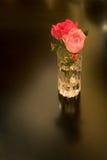 Deux roses dans le cristal Image libre de droits