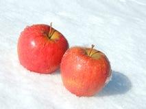 Deux rouge Apple sur la neige Photographie stock libre de droits