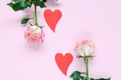 Deux deux rouges coeurs de fleur rose de floraison rose et sur les coeurs colorés de fond rose Image libre de droits