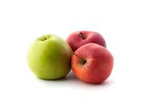 Deux rouges et pommes une mûres vertes Image libre de droits