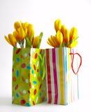 Deux sacs de cadeau Photos stock