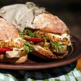 Deux sandwichs avec le poulet à un pique-nique Image stock