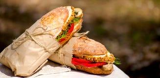 Deux sandwichs avec le poulet à un pique-nique Photos libres de droits