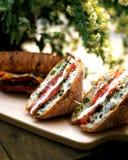 Deux sandwichs sur la table de pique-nique Image stock