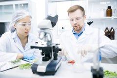 Deux scientifiques faisant la recherche dans le laboratoire images stock