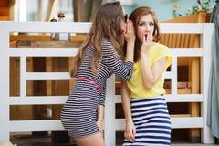 Deux secrets de part de jeunes filles Photographie stock libre de droits